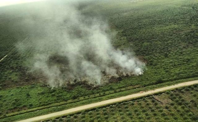 https: img-k.okeinfo.net content 2019 06 25 340 2070746 kebakaran-hutan-dan-lahan-di-riau-capai-3-147-hektare-XX8e53xvvX.jpg