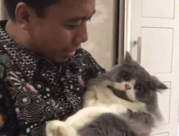 https: img-k.okeinfo.net content 2019 07 09 337 2076373 6-fakta-sutopo-penggemar-raisa-hingga-punya-kucing-kesayangan-X6tjXAYhhZ.JPG