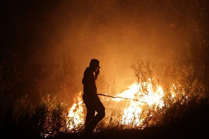 https: img-k.okeinfo.net content 2019 07 09 510 2076775 pemda-diy-waspadai-kebakaran-hutan-saat-musim-kemarau-eprqXyRKeD.jpg