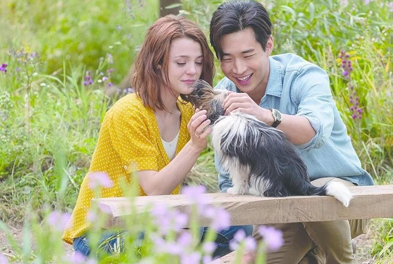 https: img-k.okeinfo.net content 2019 07 11 206 2077761 a-dog-s-journey-ajarkan-indahnya-persahabatan-manusia-dan-anjing-xGgCNtV7kz.jpg
