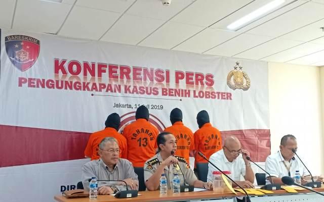 https: img-k.okeinfo.net content 2019 07 11 337 2077546 polri-gagalkan-penyelundupan-benih-lobster-ke-singapura-3VWts3ZPfh.jpg