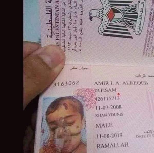 https: img-k.okeinfo.net content 2019 07 19 18 2081037 warganet-terenyuh-melihat-foto-paspor-bocah-palestina-dengan-alat-bantu-pernafasan-lgIYrviL1a.jpg