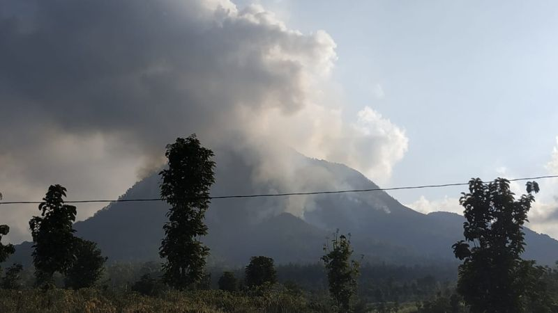 https: img-k.okeinfo.net content 2019 08 03 519 2087149 23-kasus-kebakaran-hutan-di-jatim-mayoritas-karena-ulah-manusia-eXWqodp6ci.jpg