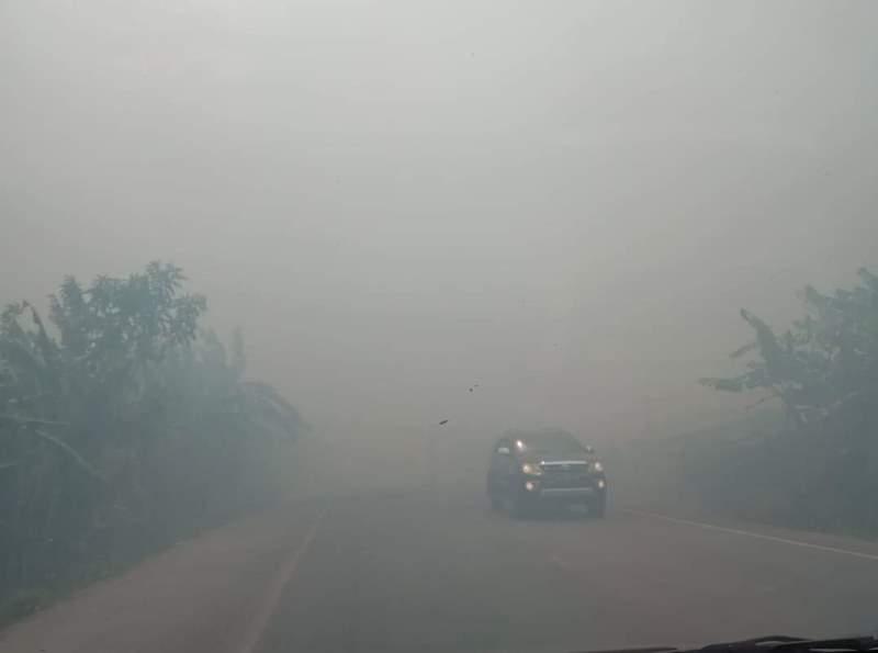 https: img-k.okeinfo.net content 2019 08 12 340 2090832 palangka-raya-diselimuti-asap-kebakaran-hutan-sekolah-diliburkan-2MgTKdqNIp.jpeg