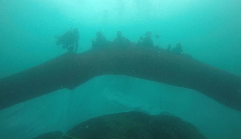 https: img-k.okeinfo.net content 2019 08 18 406 2093486 10-penyelam-bentangkan-bendera-74-meter-di-bawah-laut-papua-barat-RE4Epolg8S.jpg