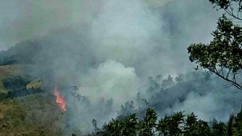 https: img-k.okeinfo.net content 2019 08 19 519 2093689 15-hektare-lahan-di-gunung-arjuno-terbakar-1CznM1SdLe.jpeg