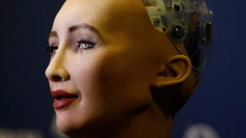 https: img-k.okeinfo.net content 2019 08 26 56 2096926 robot-asmara-bisa-ancam-keselamatan-nyawa-pemiliknya-n7wK388ZKJ.jpg