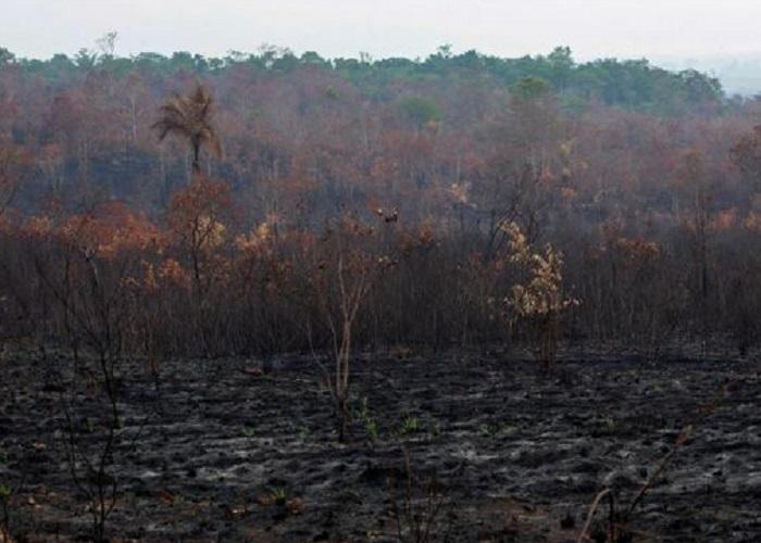 https: img-k.okeinfo.net content 2019 08 26 614 2096689 bencana-alam-di-muka-bumi-telah-tertulis-di-alquran-1400-tahun-lalu-o1rMKRwYV8.jpg