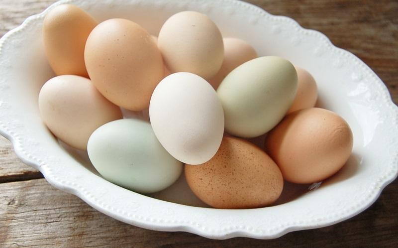 https: img-k.okeinfo.net content 2019 09 04 481 2100536 telur-ayam-ini-bisa-jadi-obat-kanker-LGtHd6NjGp.JPG