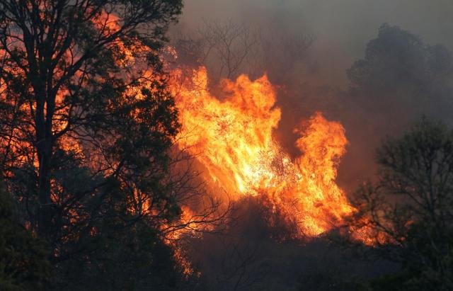 https: img-k.okeinfo.net content 2019 09 07 18 2101927 australia-berjuang-padamkan-100-titik-kebakaran-hutan-pkwdzEgarP.jpg