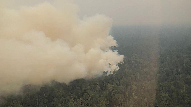 https: img-k.okeinfo.net content 2019 09 09 340 2102604 ketua-dprd-kapolda-jambi-pantau-kebakaran-hutan-via-udara-a9m5mBi2EF.jpg
