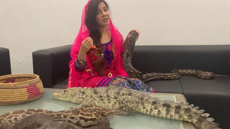 https: img-k.okeinfo.net content 2019 09 15 18 2105125 penyanyi-pakistan-hadapi-hukuman-penjara-setelah-ancam-pm-india-dengan-ular-dqaQUAF21H.jpg