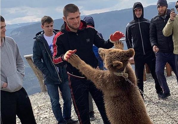 https: img-k.okeinfo.net content 2019 09 17 43 2105716 khabib-dikecam-gara-gara-duel-dengan-beruang-Np6XqENgdG.jpg