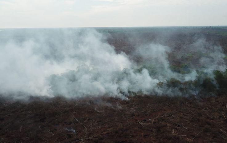 https: img-k.okeinfo.net content 2019 09 23 337 2108013 dpr-pembakar-hutan-selevel-dengan-teroris-TiYRIjWK0B.JPG