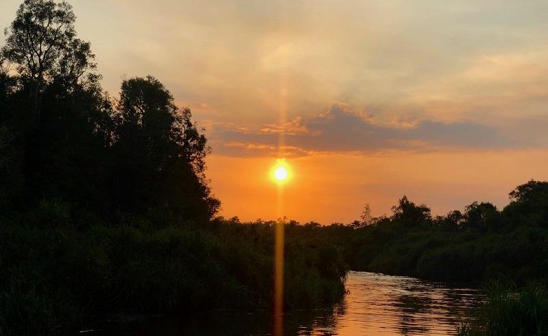 https: img-k.okeinfo.net content 2019 09 29 406 2110730 indahnya-sunset-di-sungai-sekonyer-akhiri-perjalanan-jelajah-orangutan-di-kalimantan-BgItVGLkOk.jpg