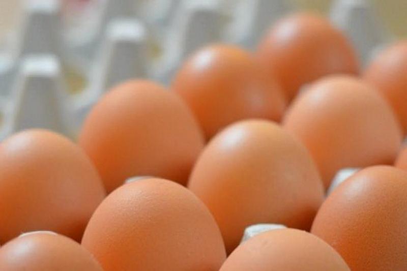 https: img-k.okeinfo.net content 2019 09 29 481 2110671 cara-mudah-tingkatkan-kandungan-omega-3-pada-telur-3BYvOVnBB8.jpg