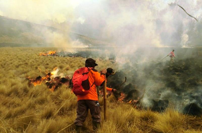 https: img-k.okeinfo.net content 2019 10 01 519 2111550 api-di-gunung-semeru-belum-bisa-dipadamkan-97-hektare-lahan-hangus-Z4VwweohSV.jpg