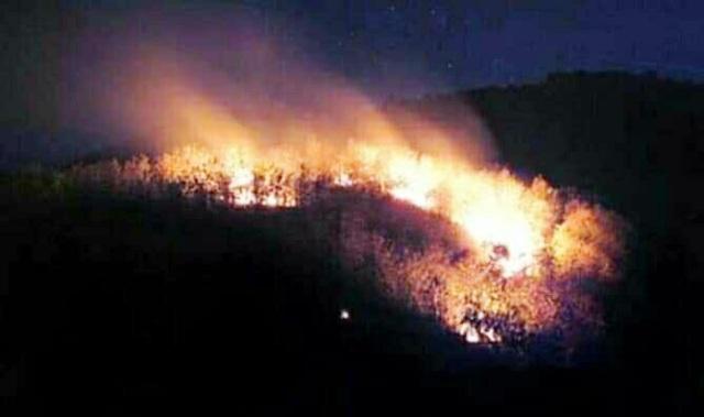 https: img-k.okeinfo.net content 2019 10 12 519 2116012 ini-penyebab-kebakaran-di-gunung-arjuno-terus-meluas-kLIW2Krm3T.jpg