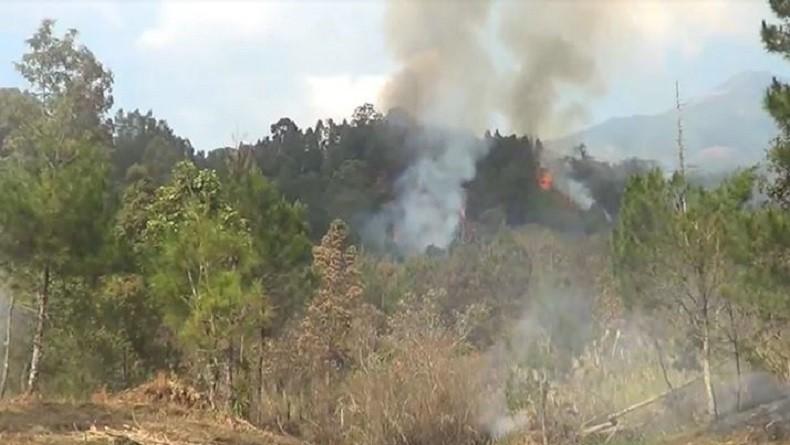 https: img-k.okeinfo.net content 2019 10 22 512 2120455 kebakaran-hutan-gunung-lawu-di-karanganyar-diduga-akibat-ulah-manusia-LqUOLyNyoT.JPG
