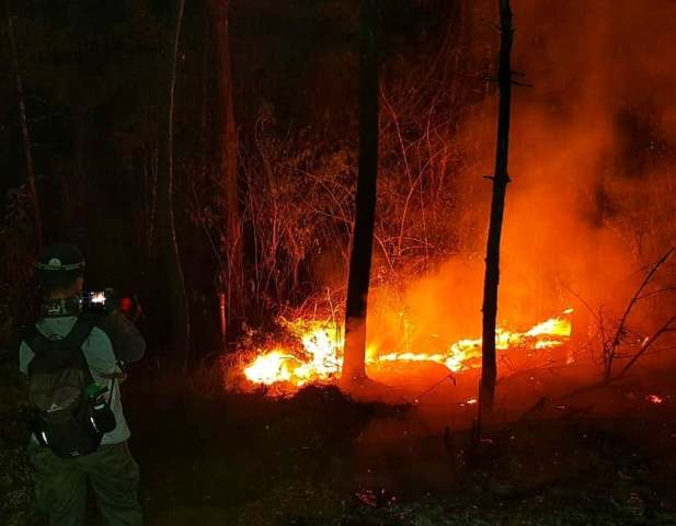 https: img-k.okeinfo.net content 2019 10 23 525 2120881 kawasan-taman-nasional-gunung-ciremai-kembali-terbakar-TW1rjbkKLI.jpg