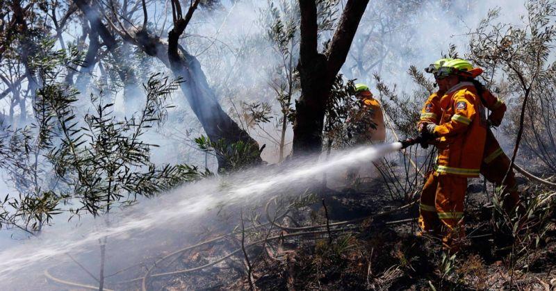 https: img-k.okeinfo.net content 2019 10 25 512 2121502 jalur-pendakian-gunung-lawu-ditutup-dampak-kebakaran-hutan-meluas-UEI8a9Js3C.jpg