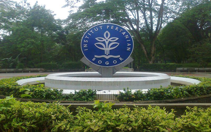 https: img-k.okeinfo.net content 2019 11 13 65 2129337 guru-besar-ipb-bambang-hero-raih-anugerah-john-maddox-prize-2019-uJ88LBzd7A.jpg