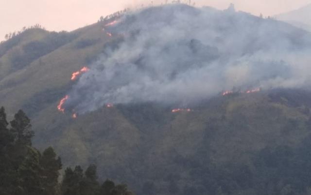 https: img-k.okeinfo.net content 2019 11 17 512 2130898 jalur-pendakian-gunung-lawu-belum-kondusif-akibat-kebakaran-hutan-tTzRxTVsa8.jpg