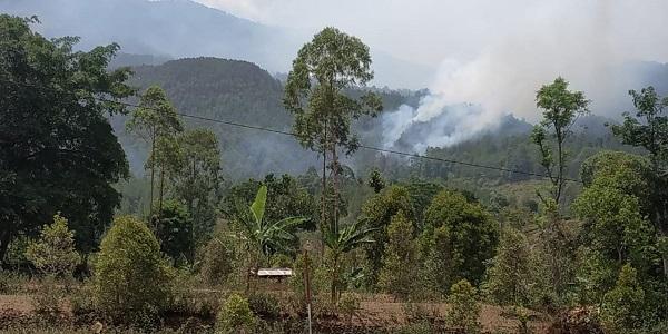 https: img-k.okeinfo.net content 2019 11 17 519 2130928 ini-penyebab-kebakaran-hutan-di-gunung-lawu-sulit-diatasi-prHZhcgEnI.jpg