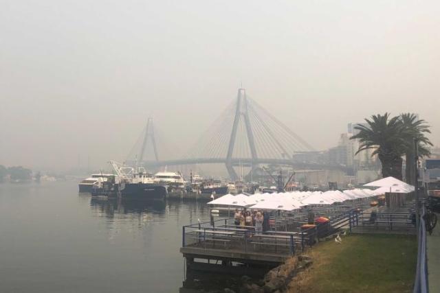 https: img-k.okeinfo.net content 2019 12 10 18 2140382 kualitas-udara-sydney-mengarah-ke-tingkat-berbahaya-imbas-kebakaran-hutan-Om6sLIh0Xl.jpg