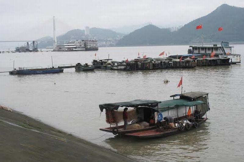https: img-k.okeinfo.net content 2020 01 08 320 2150630 ikan-langka-punah-china-larang-nelayan-mancing-di-sungai-yangtze-selama-10-tahun-XWC0Loe8sz.jpg