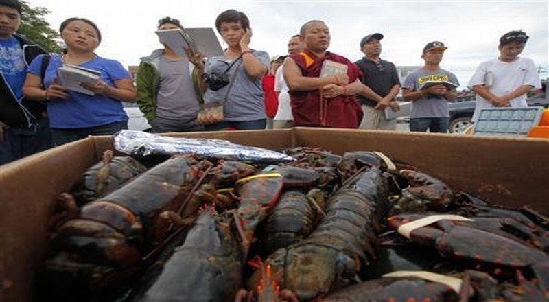 https: img-k.okeinfo.net content 2020 01 11 320 2151819 fakta-potensi-perairan-natuna-dari-lobster-hingga-kawasan-wisata-oakLaoZcMV.jpg
