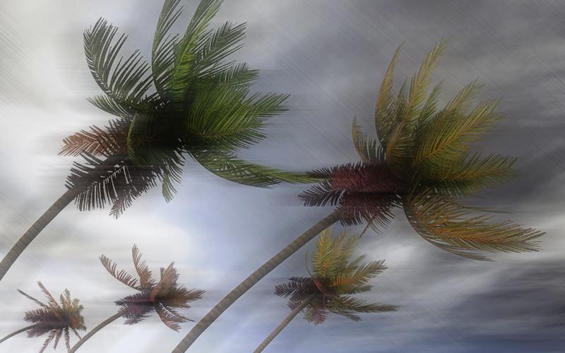 https: img-k.okeinfo.net content 2020 01 13 337 2152414 bnpb-imbau-masyarakat-antisipasi-dampak-siklon-tropis-claudia-2-hari-ke-depan-pf9TReQzgz.jpg