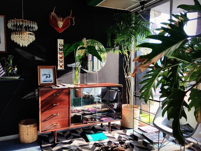 https: img-k.okeinfo.net content 2020 01 24 196 2157986 ide-dekorasi-taman-indoor-minimalis-modern-bikin-rumah-jadi-nyaman-6sbOLBUgw0.jpg