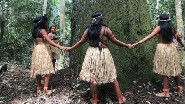 https: img-k.okeinfo.net content 2020 02 24 18 2173464 remaja-suku-amazon-rela-bertarung-sampai-mati-selamatkan-hutan-amazon-Q0oM0Tu6ai.jpg