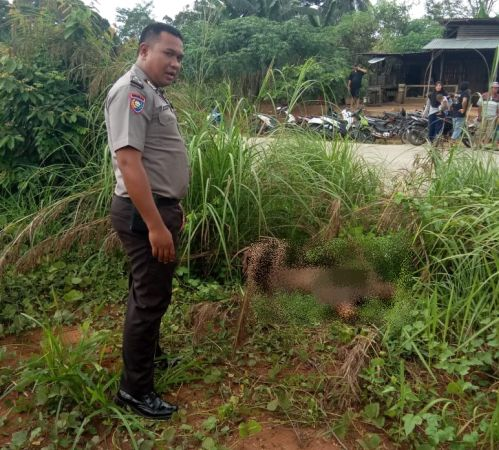 https: img-k.okeinfo.net content 2020 02 25 340 2173832 pengusaha-di-pekanbaru-jadi-korban-pembunuhan-mobil-terbakar-21ytvqGbnG.jpg