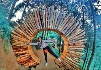 UNCOVER INDONESIA: Berfoto Asyik di Goa Pinus, Malang, Tiket Masuknya Cuma Rp5.000