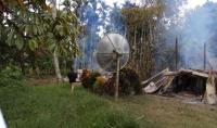 Bentrok di Keerom Papua, 1 Orang Tewas dan Belasan Rumah Dibakar