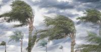 Angin Kencang Rusak Puluhan Rumah di Pontianak