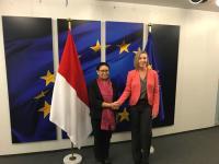 Kumpulkan Dukungan Bagi Palestina, Menlu Retno Desak Uni Eropa Tidak Ikuti Amerika Serikat