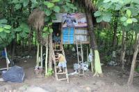 Hidup Miskin, Keluarga Ini Pilih Tinggal Diatas Pohon