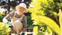 Lansia Hobi Berkebun Hidupnya Lebih Bahagia dan Awet Muda