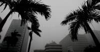 Intensitas Hujan Meningkat, BMKG Imbau Masyarakat untuk Waspada