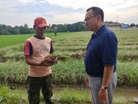 Polemik Impor Beras Menjadi Bencana Ekonomi Petani