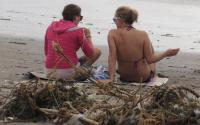 Selebritis hingga Aktivis Punguti Sampah di Pantai Kuta