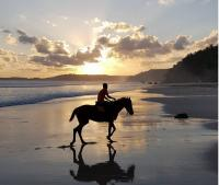 Menelusuri Keunggulan Pulau Sumba, The Best Beatiful Island in the World