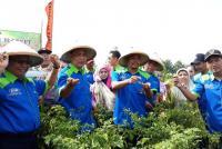 Kementan Monitor Ketersediaan Cabai Rawit Merah di Blitar Jelang Ramadan
