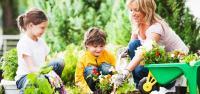 Ajari Anak Cinta Lingkungan, Ini Tips agar si Kecil Suka Berkebun