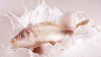 4 Makanan yang Tak Direkomendasikan Dicampur dengan Susu, Ikan Salah Satunya!