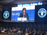 Di Hadapan Anggota FAO, Menteri LHK: Pembangunan Indonesia Utamakan Keberlanjutan