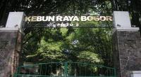 Catat! Ini 5 Agenda Besar Kota Bogor Sepanjang Agustus